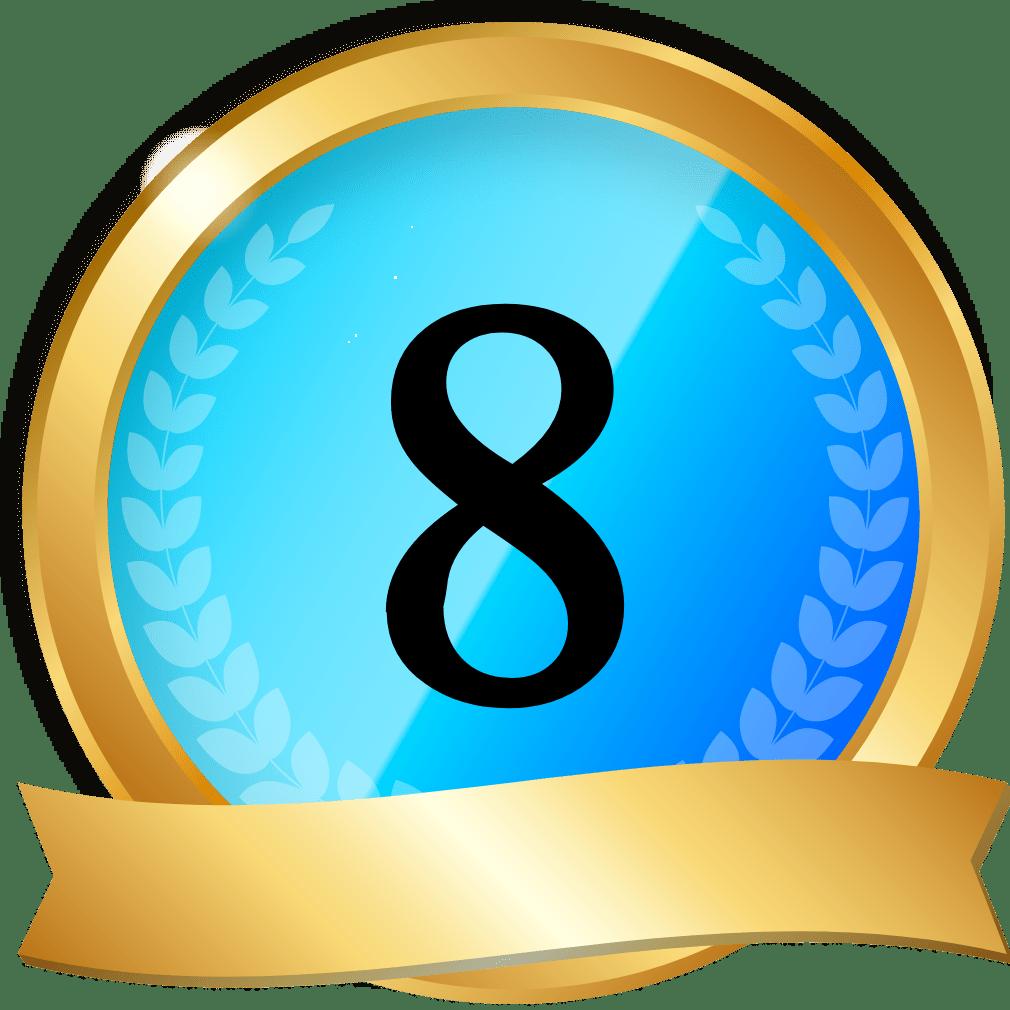 オンラインカジノサイト8位